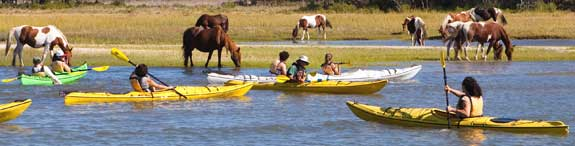 Assateague Kayak Trip