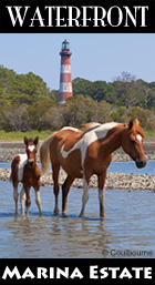 Chincoteague Waterfront Property for Sale