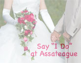Assateague Weddings